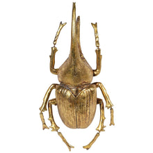 Load image into Gallery viewer, Large Golden Beetle Accessory