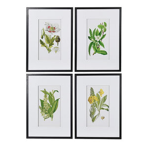 Garden Floral Pictures - Sold Separately