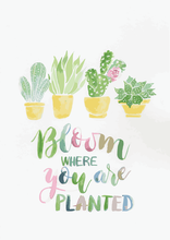 Load image into Gallery viewer, Bloom Where You Are Planted A4 Print
