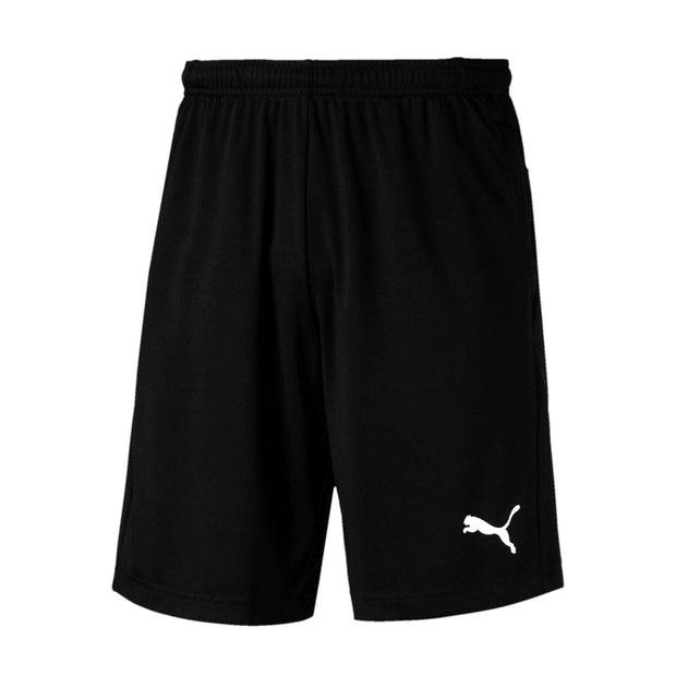 Liga Training Shorts