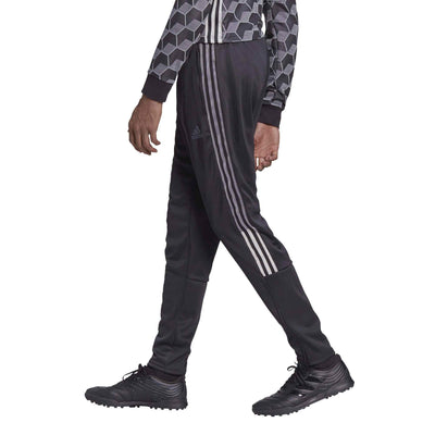 adidas TAN Training Pants