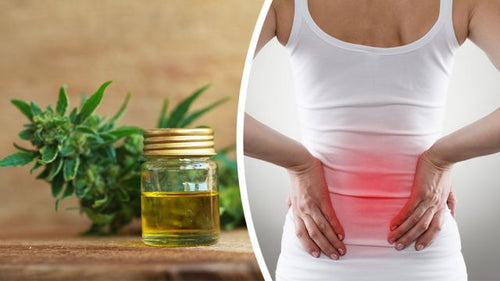 Buy Cbd Oil For Pain