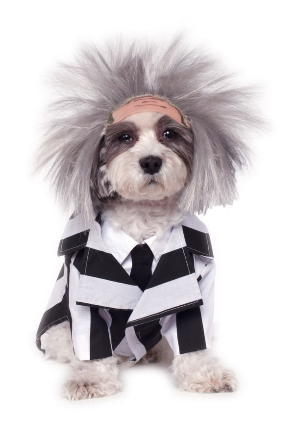 BEETLEJUICE - Pet Costume-Pet Costume-1-Classic Horror Shop