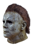 This is a Halloween 2018 Michael Myers mask that is a weathered grey face, neck and ear and has brown hair and black eyes.