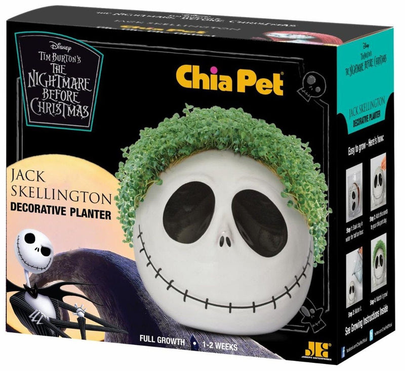 This is a Nightmare Before Christmas Jack Skellington Chia Pet and he has a white face, big black eyes, a black stitch mouth and he has green hair that is a plant.
