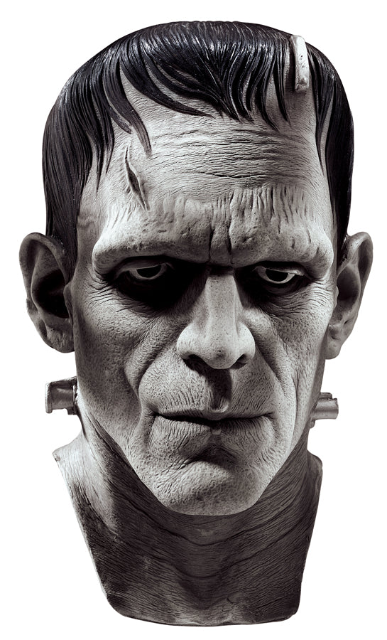 UNIVERSAL MONSTERS - Frankenstein Silver Screen Mask-Mask-1-RU-67135-Classic Horror Shop