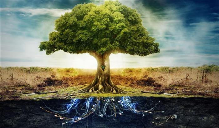 The Tree of Life - Symbol of abundance and prosperity