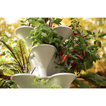 Load image into Gallery viewer, Acqua Garden - Self-Watering Vertical Growing System - AcquaGarden