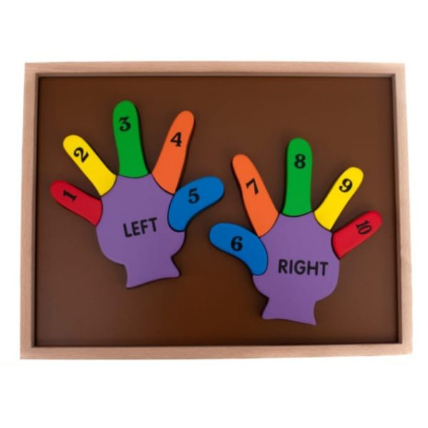 Counting Double Hand Stuby Shape Puzzle - 3 Layer