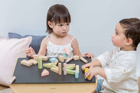 Plan Toys - 40 Building Blocks
