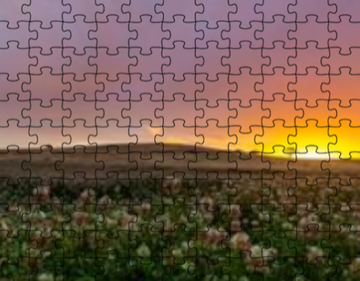 Adelaide Hills Puzzle