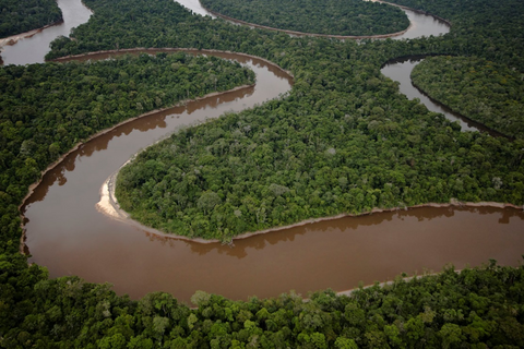 Figure 2. An expanse of uncut Amazonian rainforest in northeastern Peru.