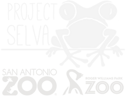 Project Selva | San Antonio Zoo | Roger Williams Park Zoo