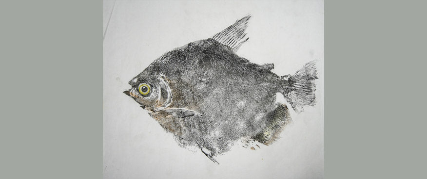 Gyotaku Fish Print 010 - Metinus (10 x 8.5 in.)