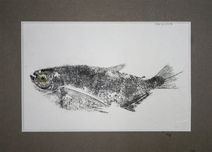 Gyotaku Fish Print 28 - Hatchet fish (9.5 x 6.5 in.) (Currently on display)