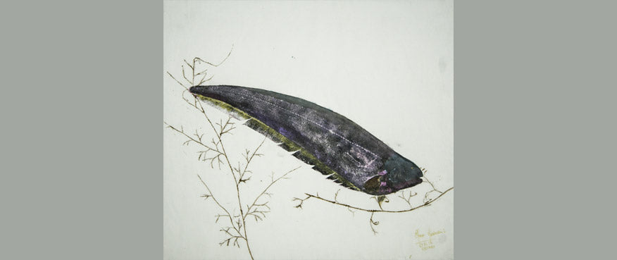 Gyotaku Fish Print 59 - Knife Fish (17.25 x 15.5 in.)