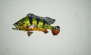 Gyotaku Fish Print 063 - Peacock Bass (24.5 x 14.5 in.)