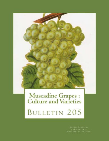 Muscadine Grapes : Culture And Varieties: Bulletin 205