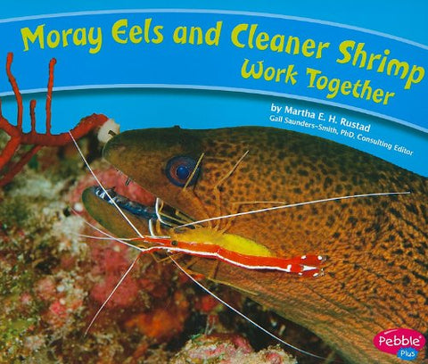 Moray Eels And Cleaner Shrimp Work Together (Animals Working Together)