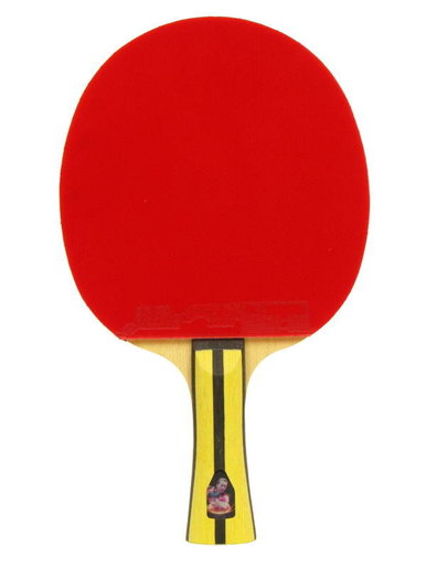 DHS Table tennis bat T4002