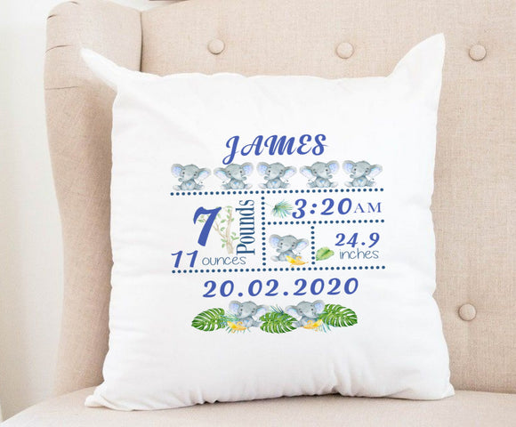Baby Details Cushion