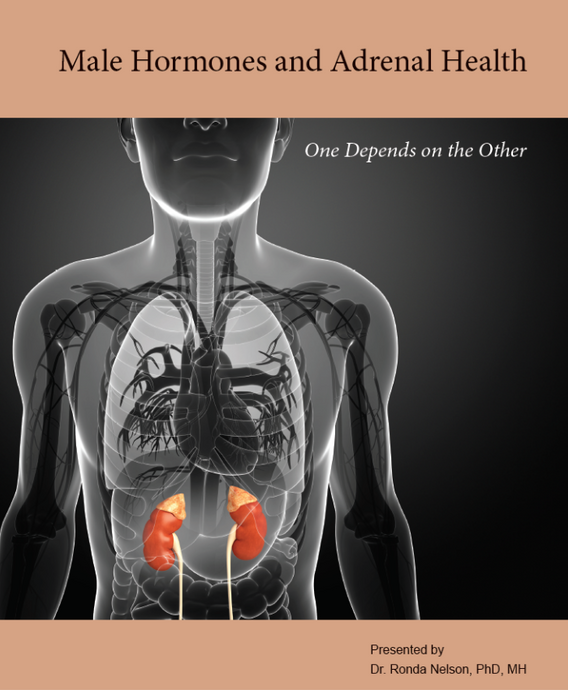 Male Hormones and Adrenal Health: One Depends on the Other