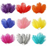 15-20CM Ostrich Feathers 10 Pack