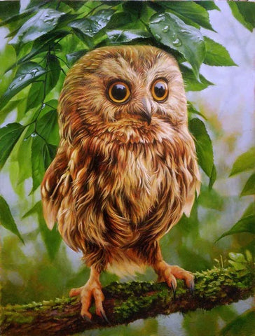 "HOMFUN Full Square/Round Drill 5D DIY Diamond Painting ""Animal Owl series"" 3D Embroidery Cross Stitch 5D Home Decor Gift"