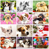 HUACAN Dog Diamond Painting 5D Animal Full Drill Square Diamond Art Embroidery Cross Stitch Home Decoration