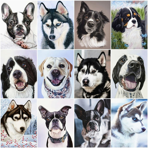 Haucan DIY Diamond Painting Dog Animal Diamond Embroidery Sale Full Square Rhinestone Picture 5d Diamond Mosaic DropShip
