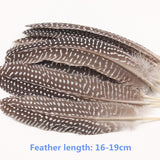 Quality Natural Feather 10 Pack