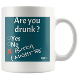 Are You Drunk Mug