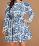 Aryanna Puff Sleeves Plus Dress