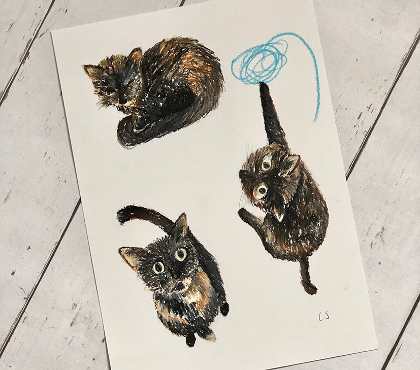 Three Cats - a portrait in progress