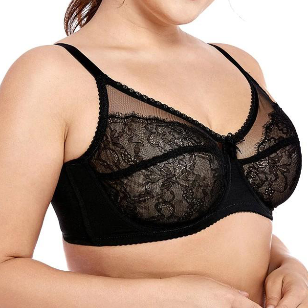 Sheer Lace Unlined Underwire - Plus Size Bra Boutique - Dr. Canine's