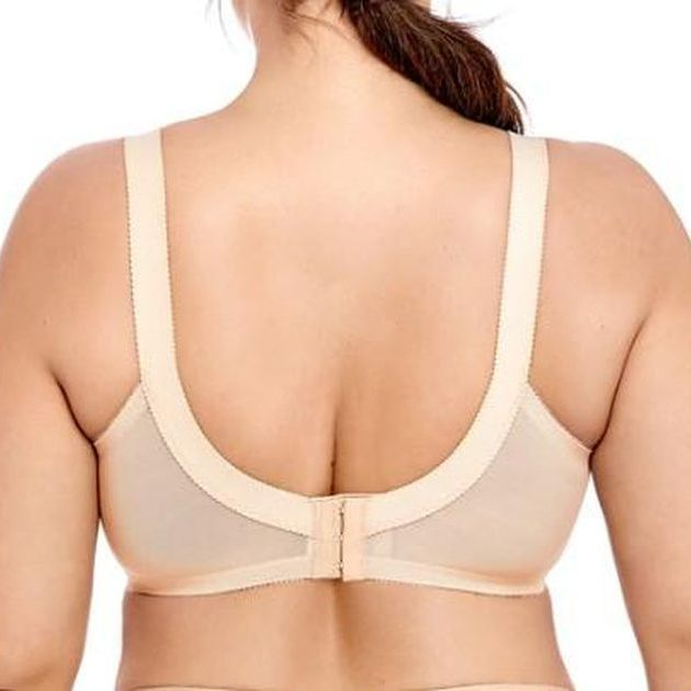 Lace Unlined Molded Bra - Plus Size Bra Boutique - Dr. Canine's