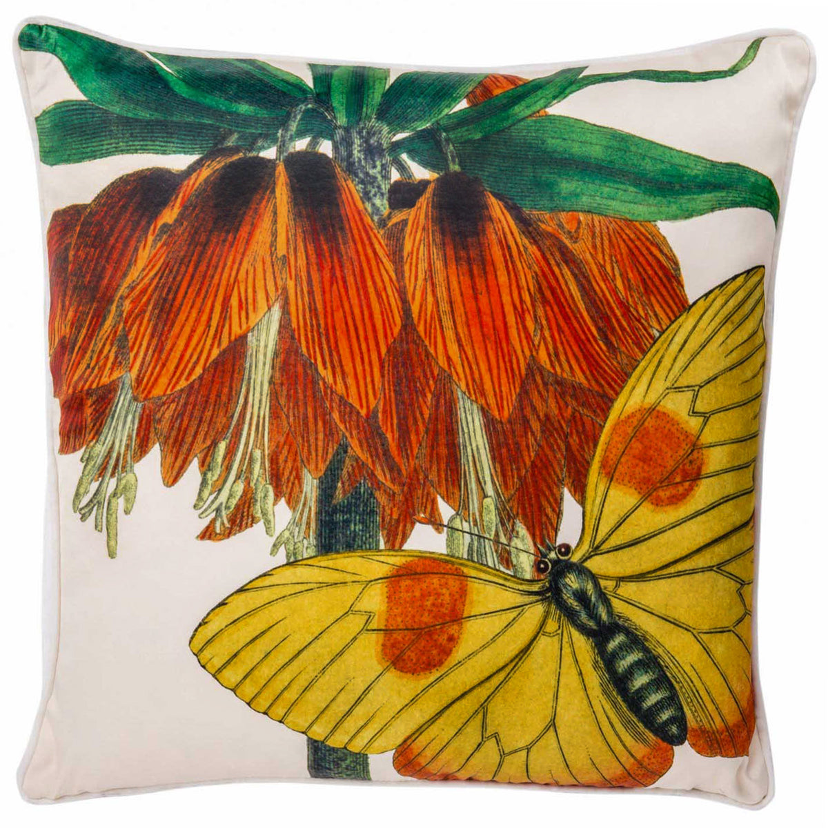 Exotico Mariposa Cushion
