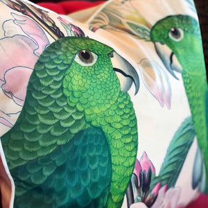 Imperio Conure Cushion