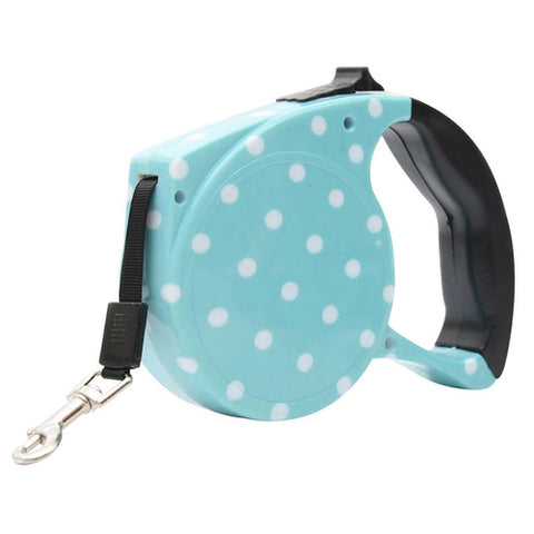 Whimsical Retractable Dog Leash