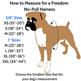 Royal Blue Freedom No-Pull Dog Harness