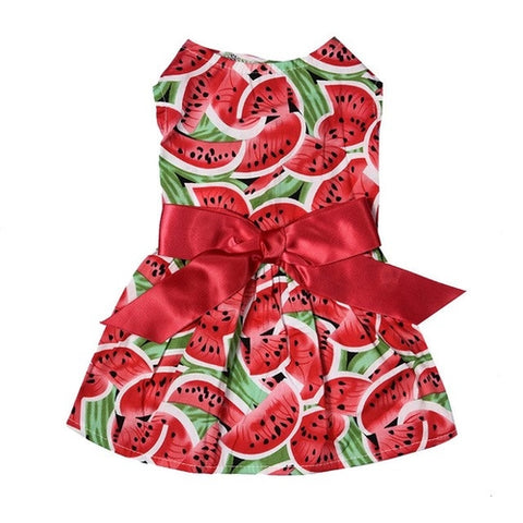 Summer Watermelon Dress
