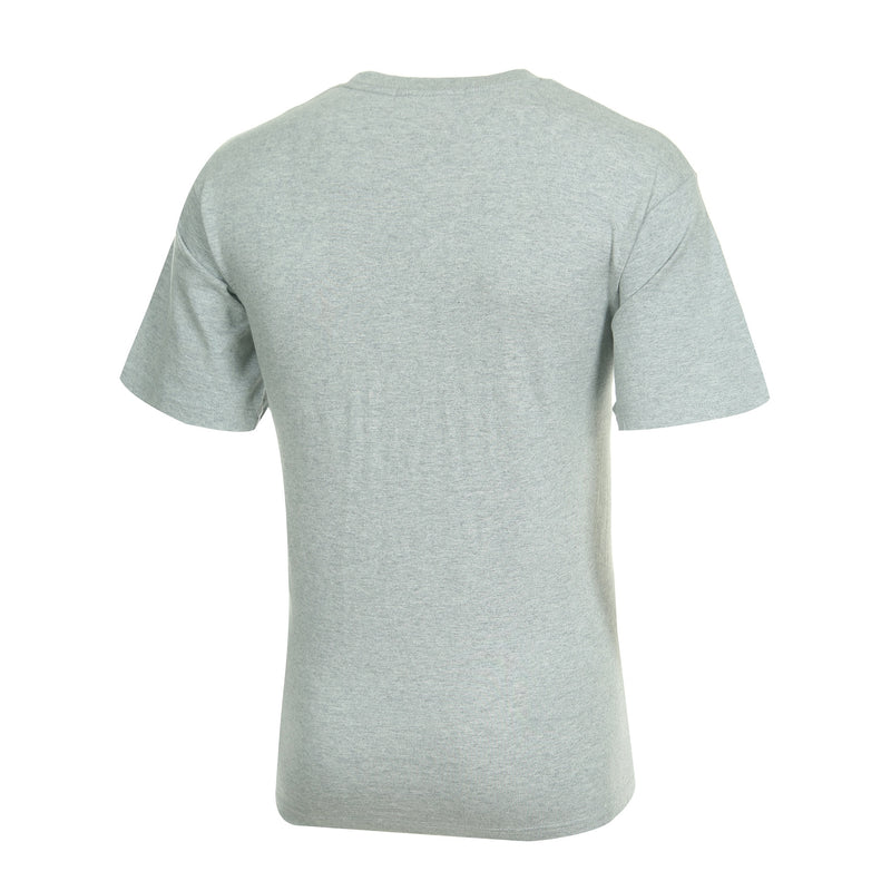 Desporte cotton heavyweight T-shirt, DSP-T42, gray, back view