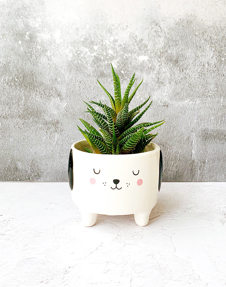 Mini Dog Planter