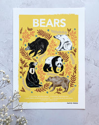 Bears: Natural History Print by Papio Press