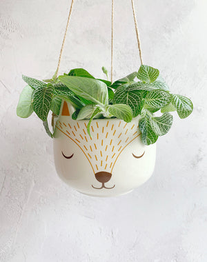 Fox Hanging Planter