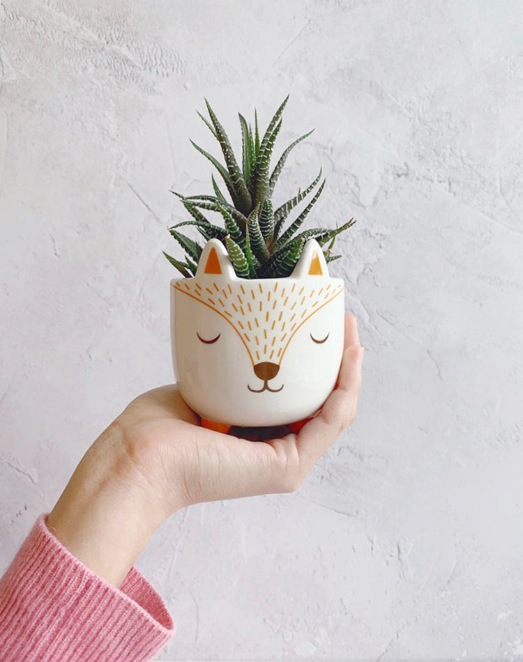 Fox Mini Planter