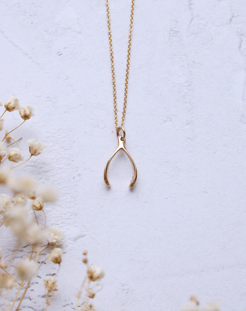 Wish- 14k Gold Fill Wishbone Necklace