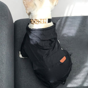 2020 New fashion Dog Raincoat [MID to BIG DOG]