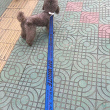Load image into Gallery viewer, Off-White Dog Walking rope