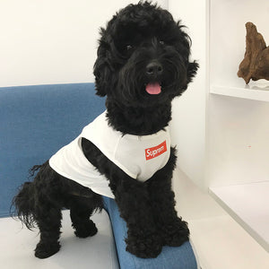 2020 Superme Pet T-shirt Summer Season